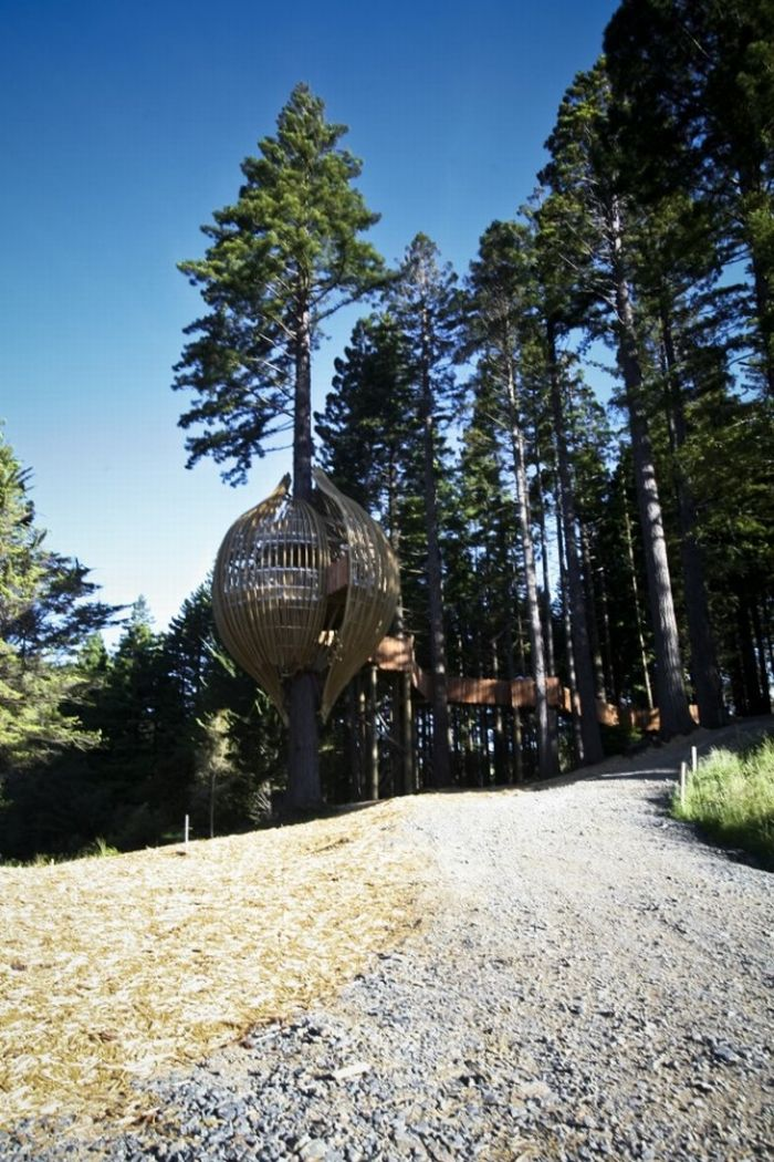 Ресторан на дереве Yellow Treehouse в Окленде (17 фото)